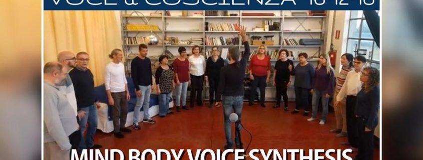 V&C MBV Synthesis